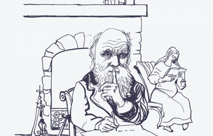 031_Darwin